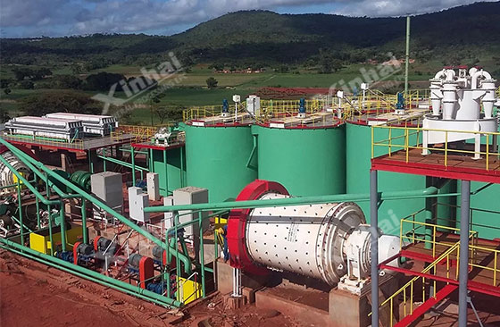 Africa 700tpd gold processing plant